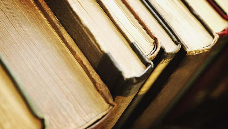 Литература — предмет национальной гордости